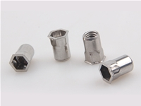 Stainless steel small head half hex rivet nut