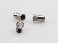 Stainless steel small head knurled rivet nut